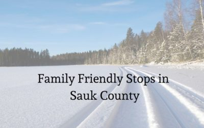 Sauk county Snowmobile day